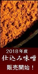 味噌 信州味噌 2018年仕込み味噌