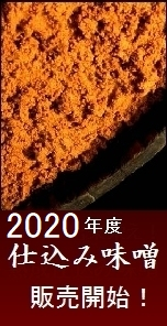 味噌 信州味噌 2020 仕込み味噌
